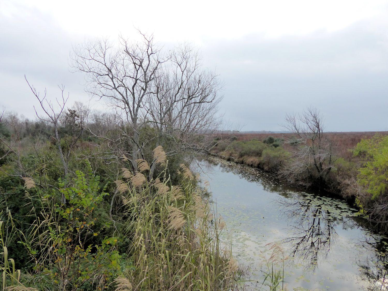San Bernard River or tributary