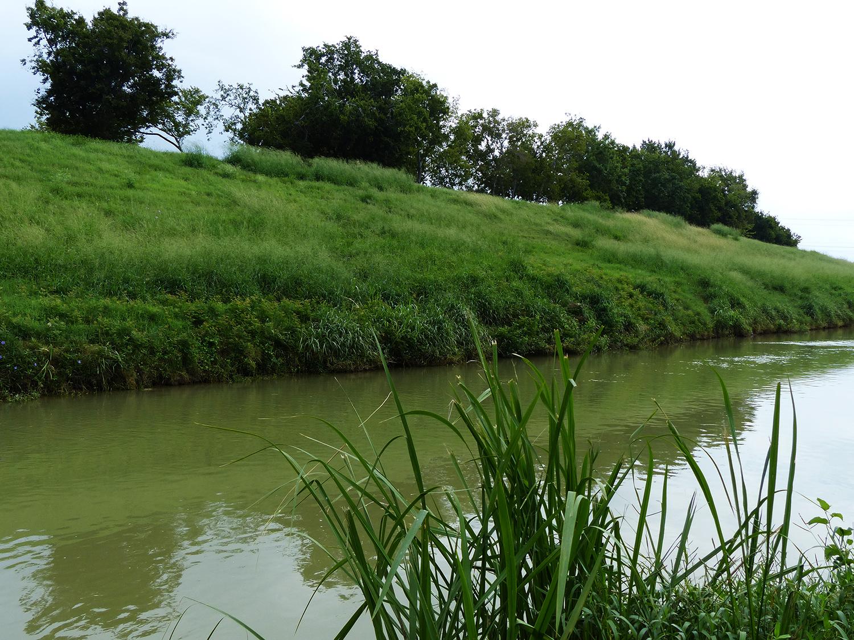 Sloped sides of Brays Bayou