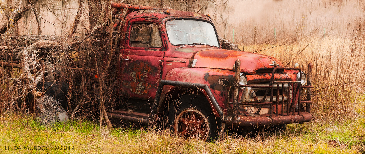 Panorama of old truck    Sony A700 with 70-400mm 1/500 sec. f/5.6 ISO 1000