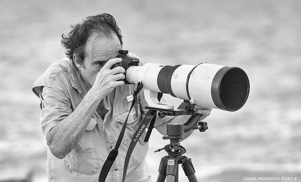 Wildlife photographer in action    Sony A77 II with 70-400mm G21/1250sec. f/5.6ISO 1000