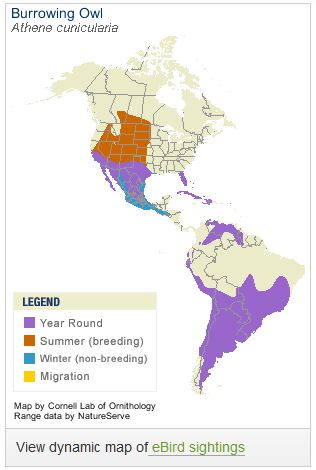 Range Map from Allaboutbirds.org