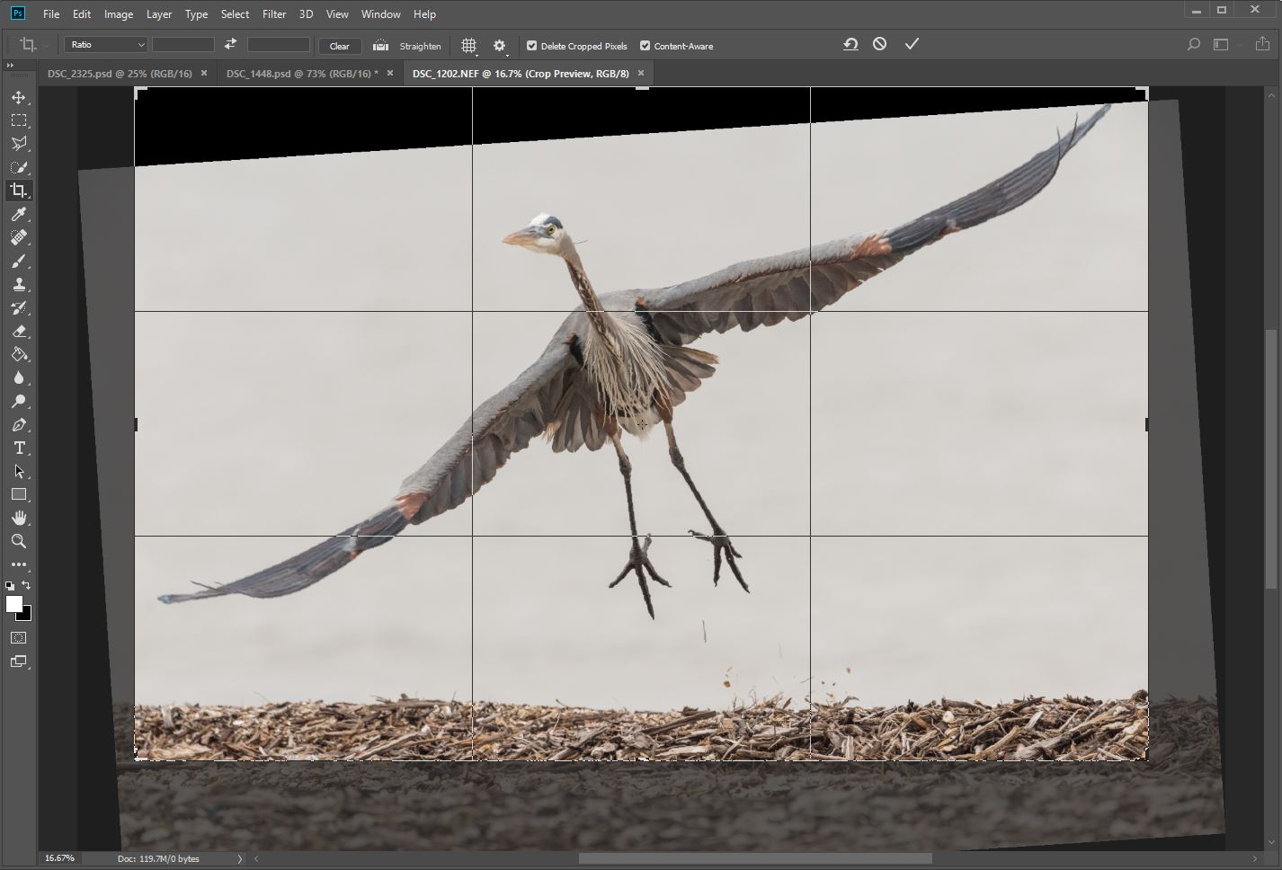 Straighten horizon in Photoshop during crop selection; make sure Content Aware box is checked.