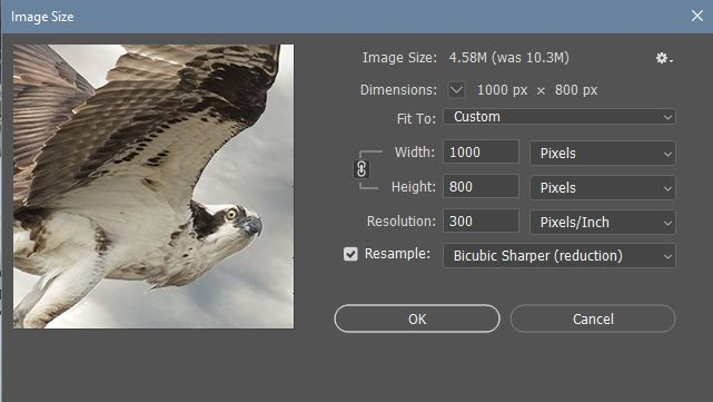 Image > Image Size    is used to change sizes, too. Enter ONE new value and make sure the lock is active keep the reduction relative. Choose Bicubic Sharper (Reduction) to reduce the size