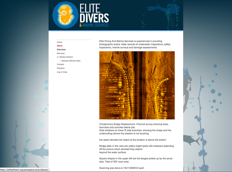 Elite Divers  Master Naval Diver that needed a site to show government contractors the work he can provide with his equipment and over 30 years of DIving Experience.