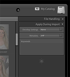 In the top right hand corner of the 'Import' window we can apply a 'Metadata' preset