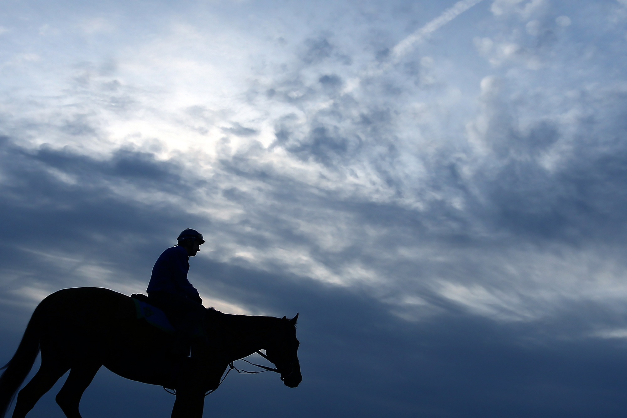 A horse and jockey leave the race track after training one day prior to the 140th Preakness Stakes at Pimlico Race Course on May 15, 2015 in Baltimore, Maryland.