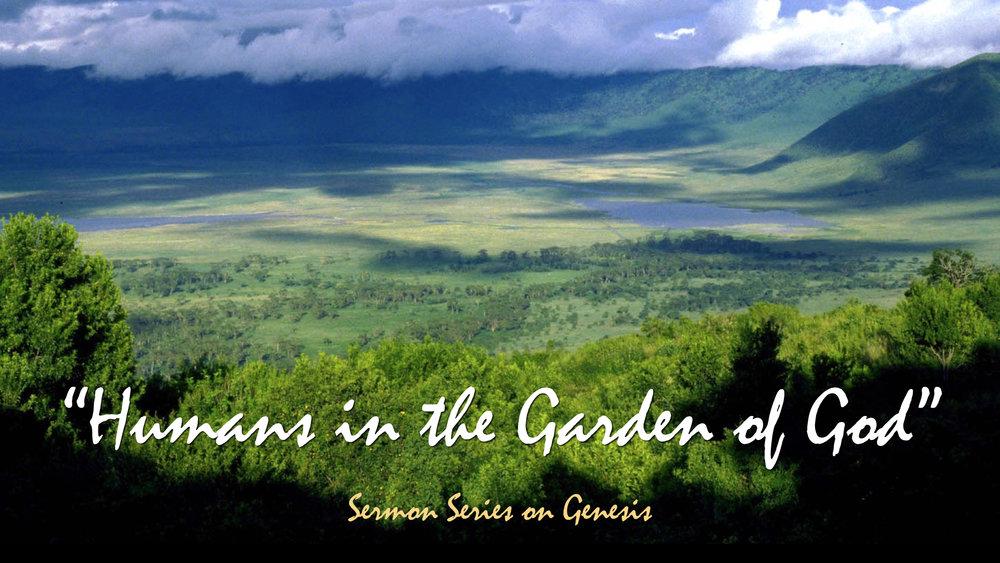 Sermons — MANHATTAN CHURCH OF CHRIST