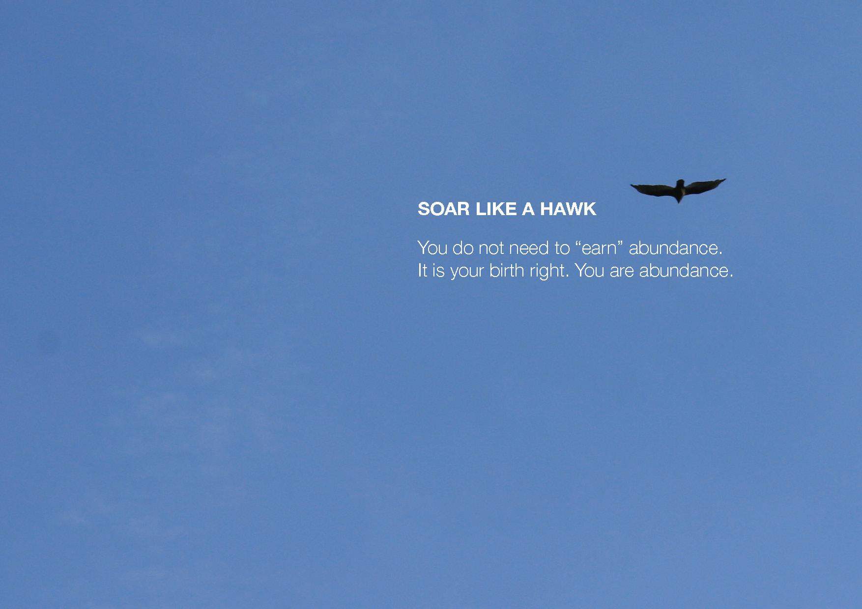 soar high.jpg