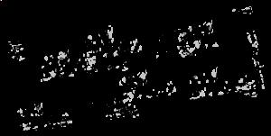 BoCo_Logo_BLACK.png