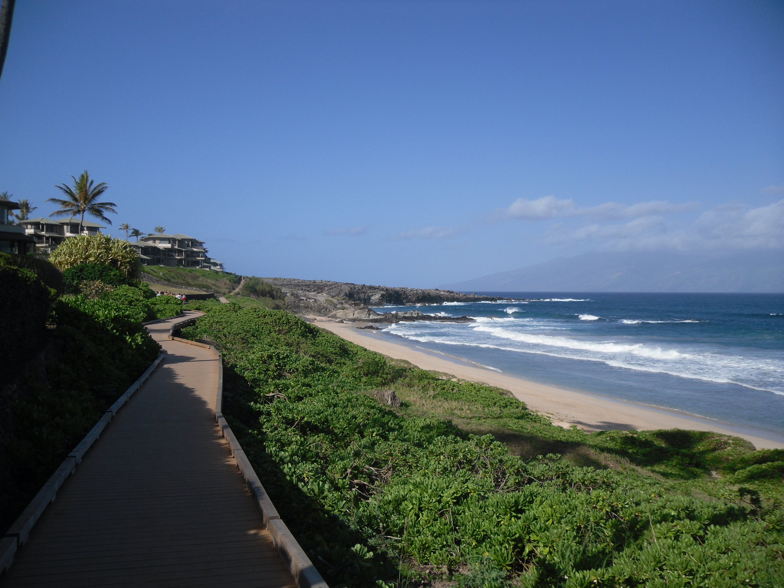 Ironwood Beach