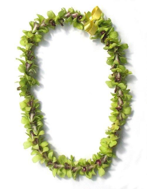 greenorchidlei.jpg