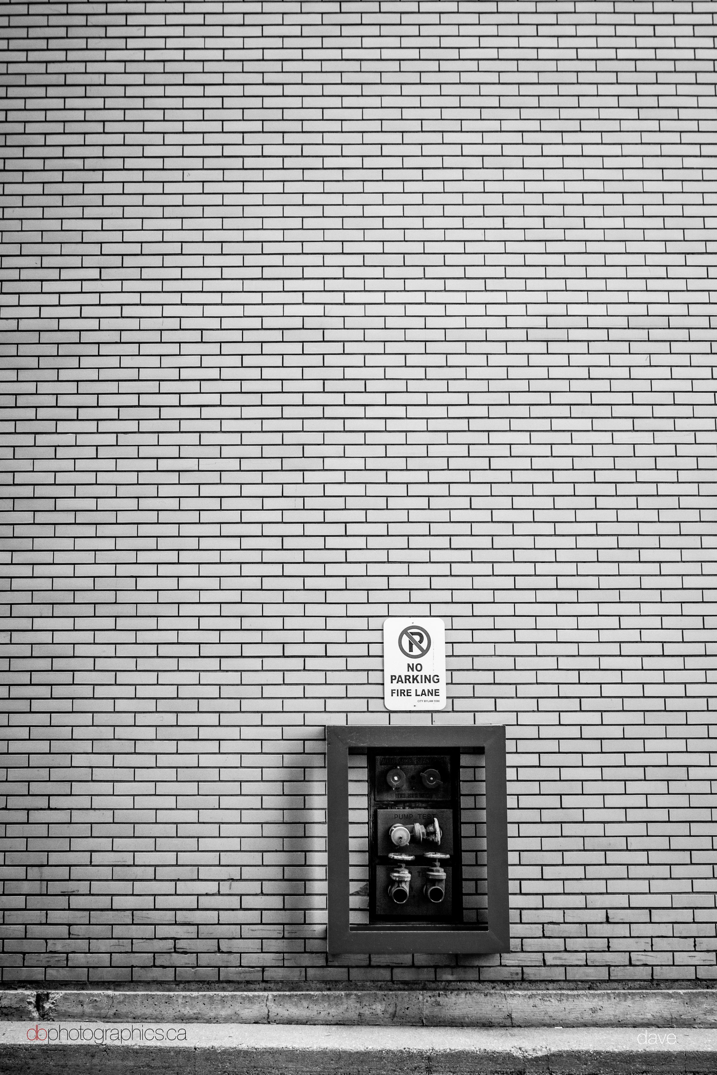 365 - dbphotographics - dave - 02 11 IMG_2934.jpg