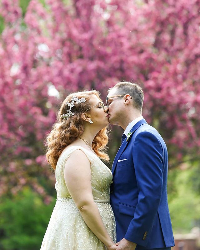 When the trees blossom, you are legally required to use them as a backdrop for wedding photos. Congratulations @krystinaiam and @munzi187! #yegweddings #bride #groom