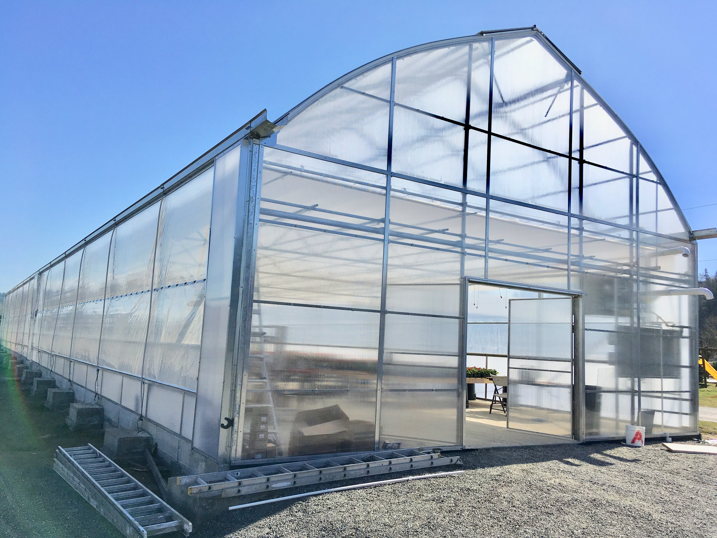Greenhouse Construction 12.jpg