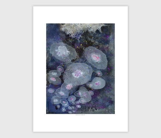 jill-bliss-crustacean-lovers-print-ITEM-5924ae34d926a-555.jpg