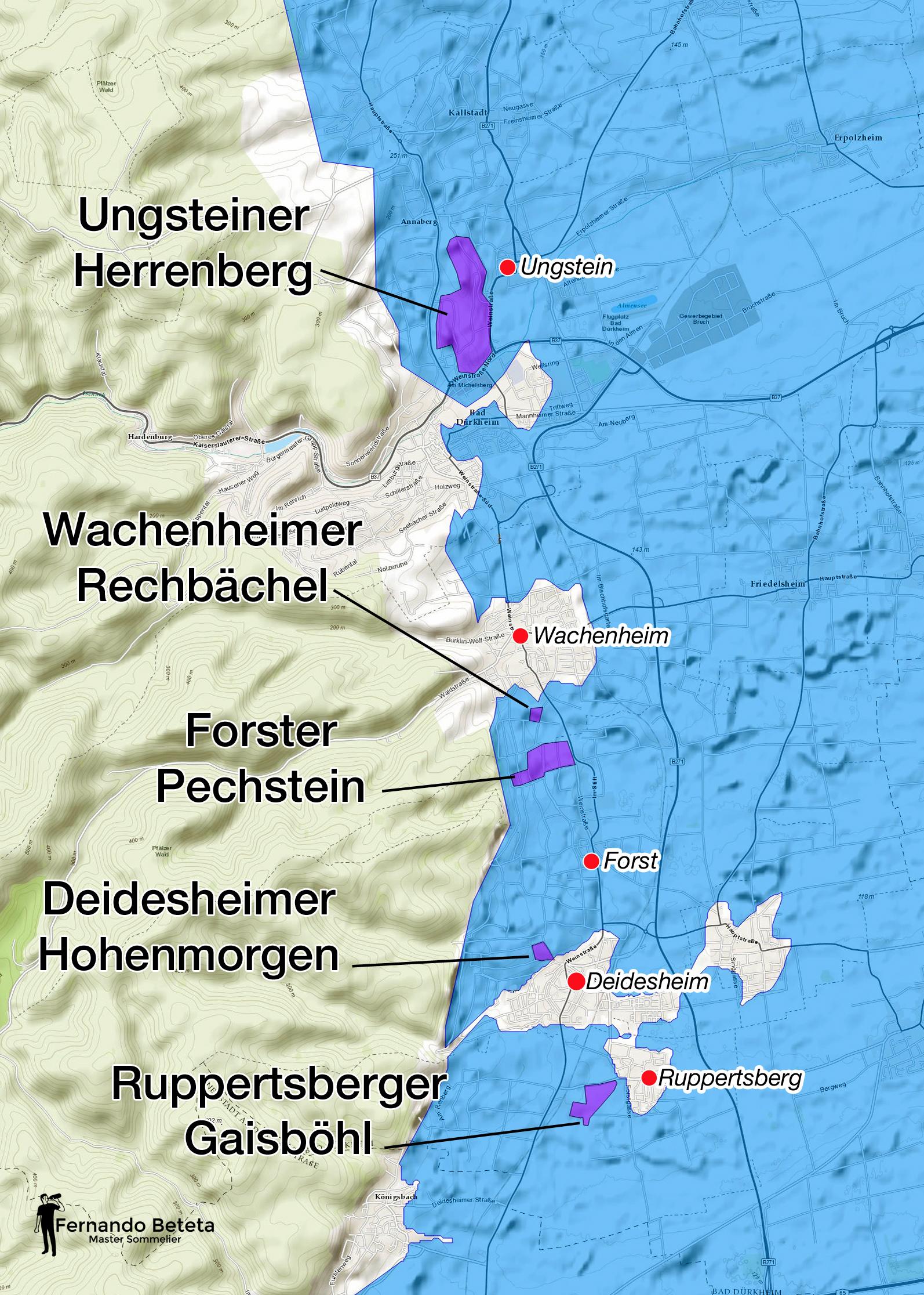 Germany - Pfalz vineyard detail