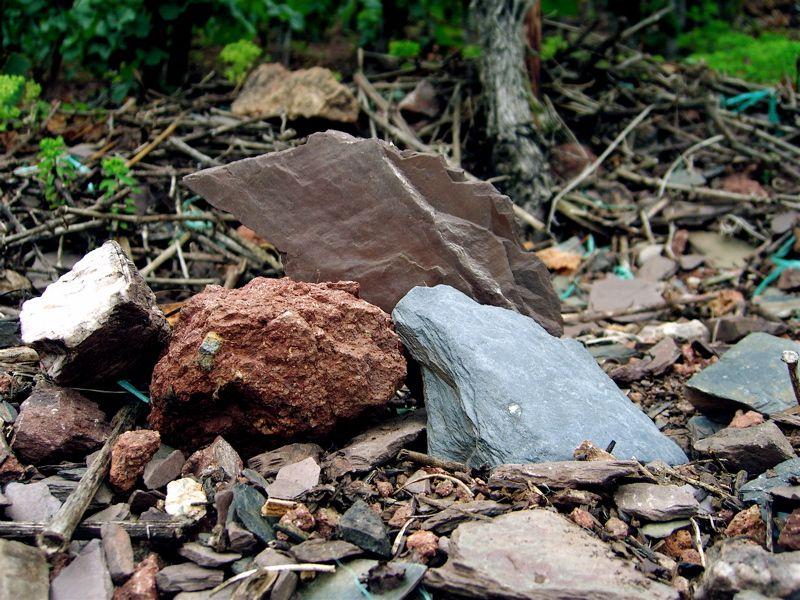 Mosel: Shell-limestone, Red, Blue Devonian, Greywacke