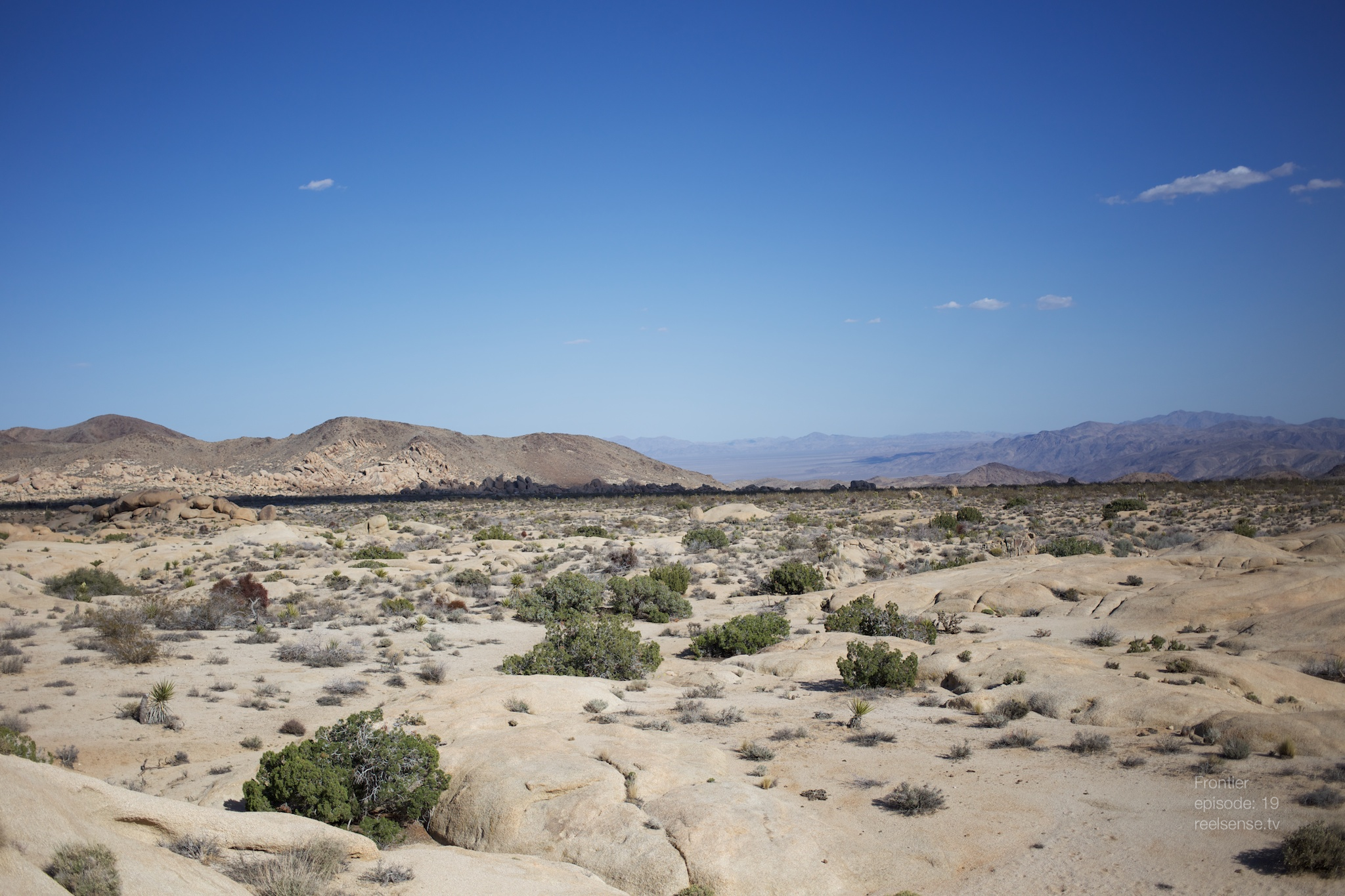 Joshua Tree - Scenic view from camp