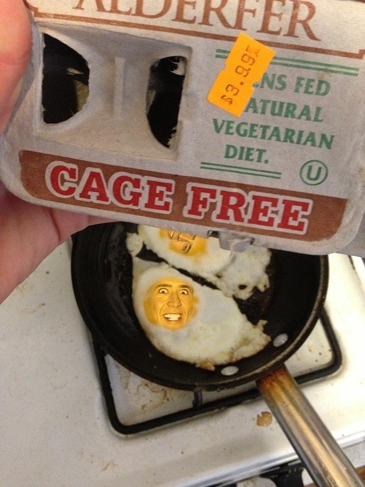 Free range, no cage