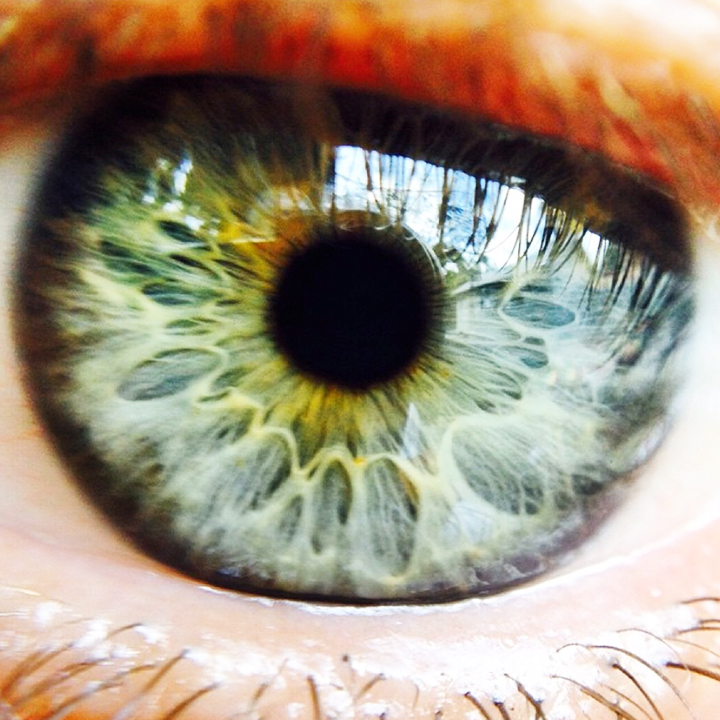 Eye Know, 2015