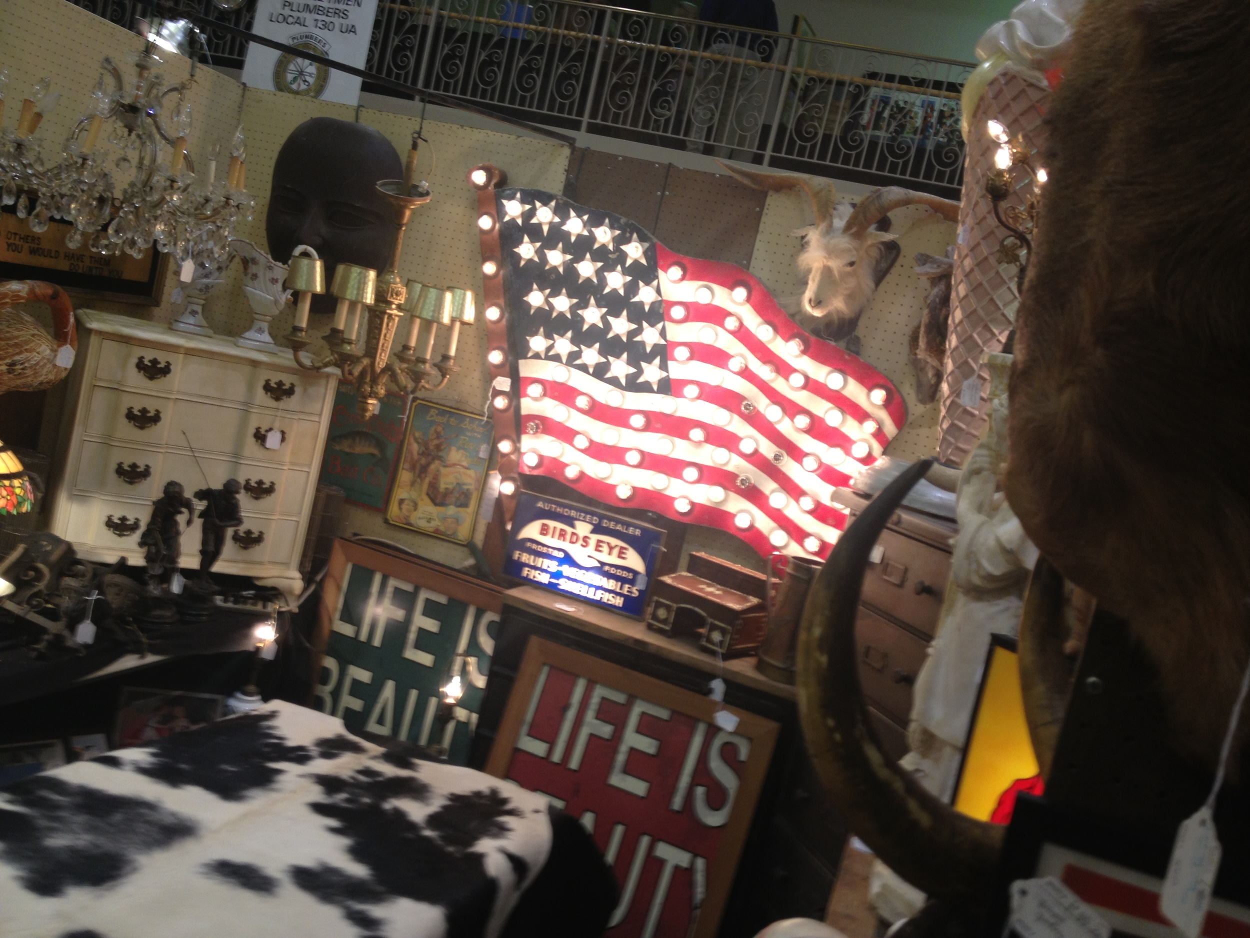 Vintage taxidermy and light up American flag!