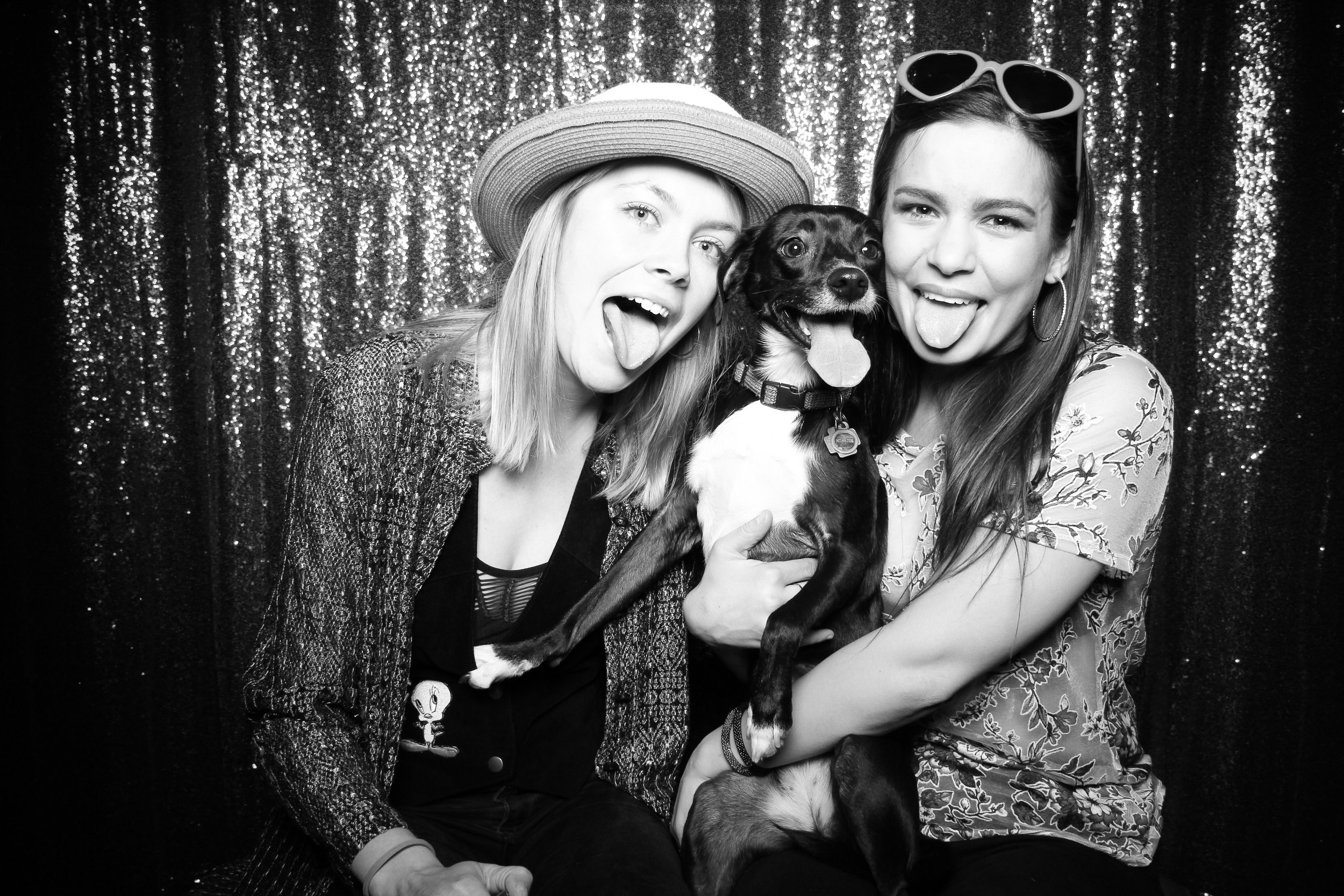 Chicago_Vintage_Photobooth_Valentines_Day_Dog_02.jpg
