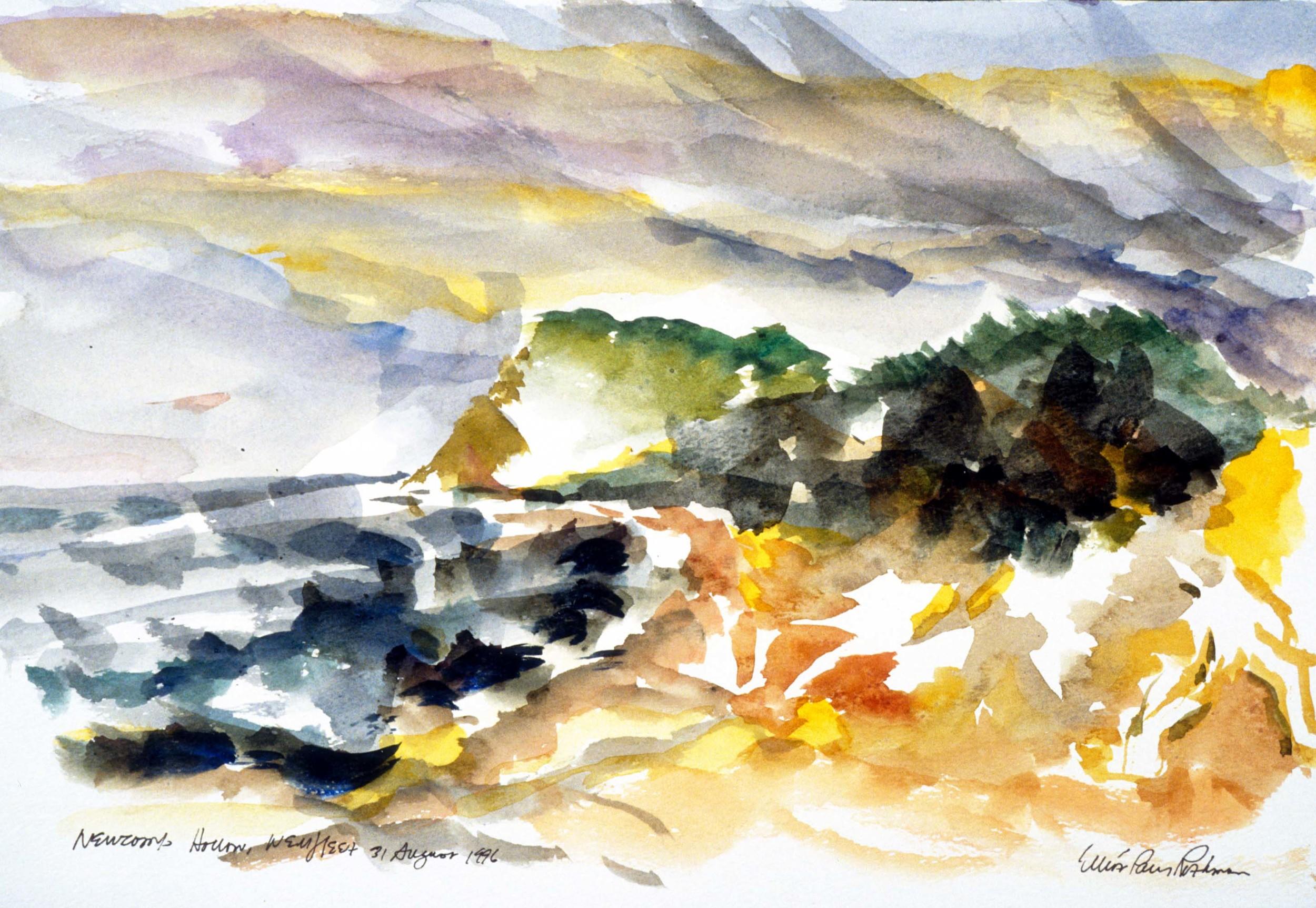 Newcomb Hollow Landscape