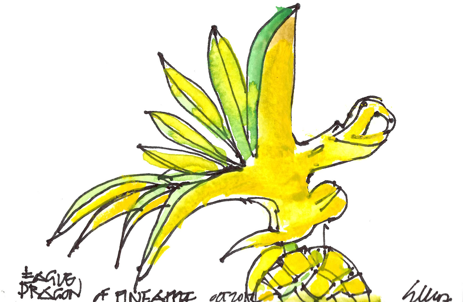 eagle dragon of pineapple 10.13