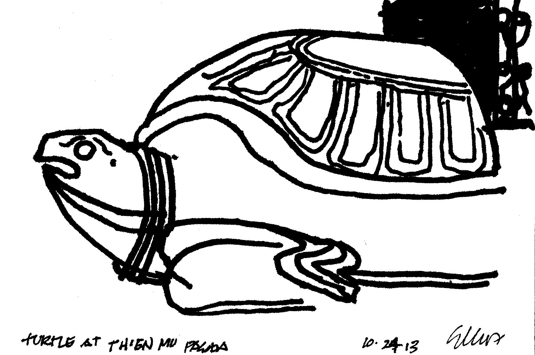 turtle at thein mu pawda 10.24.13