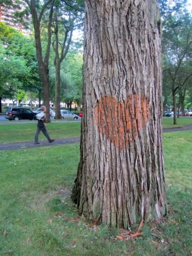 05_tree-heart-375x500.jpg