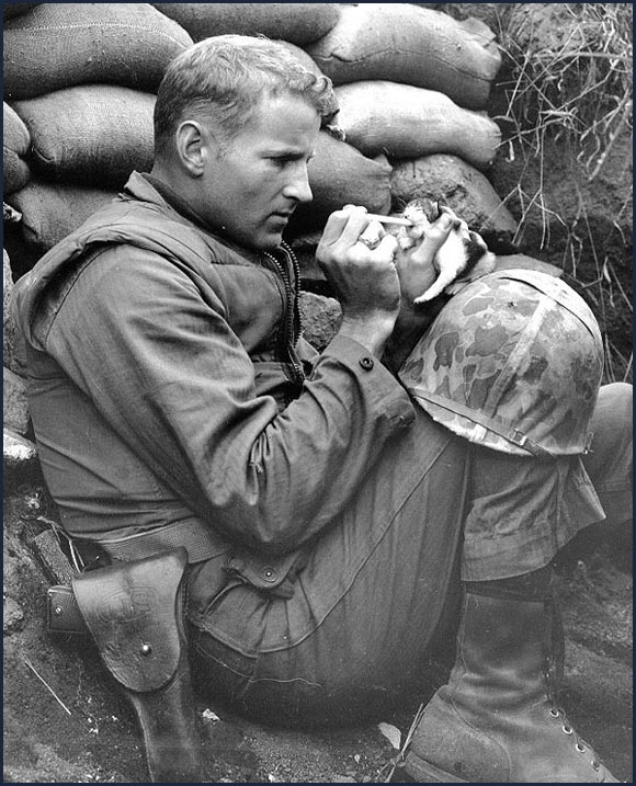 "US Marine feeding a two-week-old kitten whose mother had been killed during a battle in Korea, circa 1953. The Marine named the kitten ""Miss Hap."""