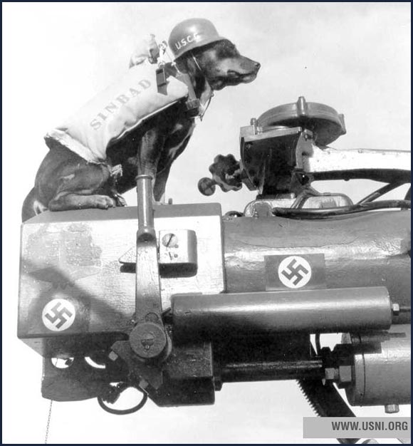 """Sinbad,"" mascot on Coast Guard cutter  Campbell , circa 1944."