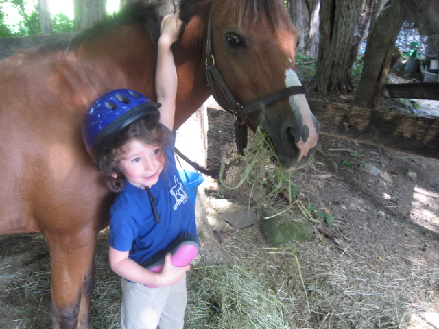 Care for the ponies  is a vital part of what we teach
