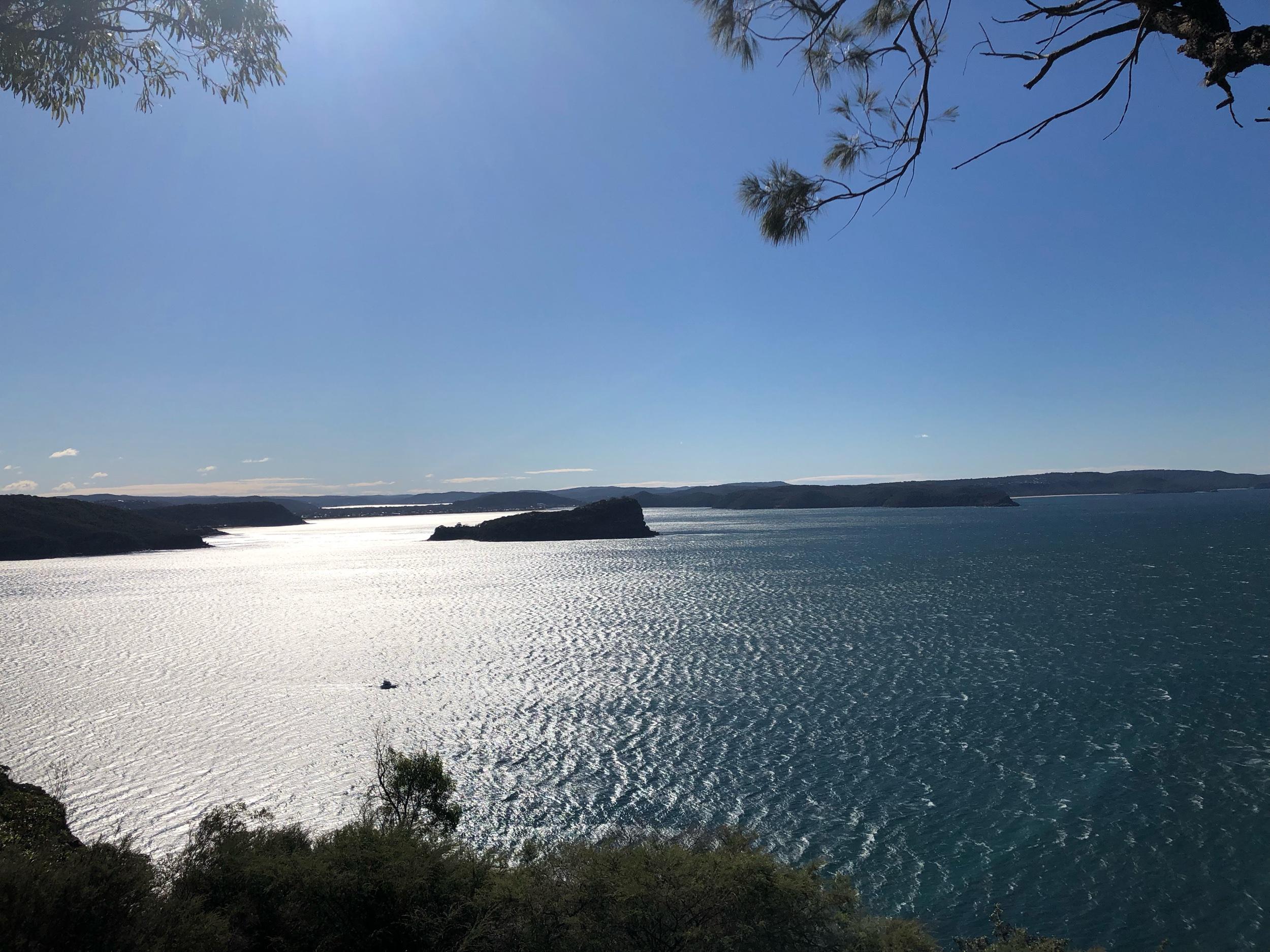Lion Island, Pittwater NSW