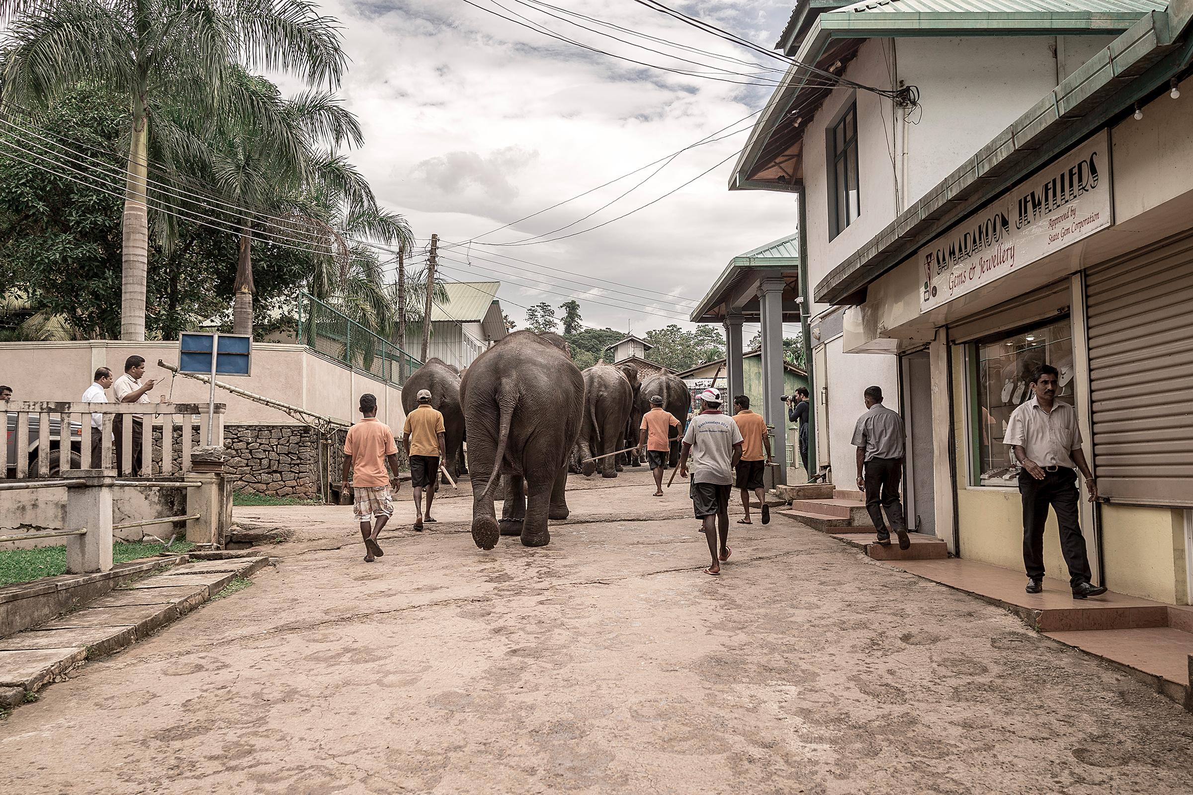 Sabaragamuwa, Sri Lanka