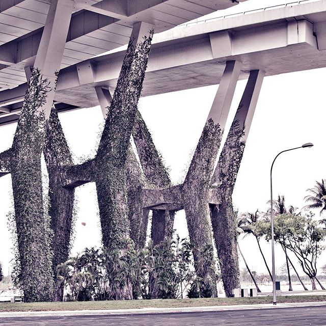 #urbanjungle #concretedesign #asia #f1circuit #f1track #grandprix #singapore #marinabay #marinabaystreetcircuit #f1 #travelphotography #architecture #overpass #southeastasia #stopover #ivy #greencity #instagood #artdirection #design #neverstopexploring