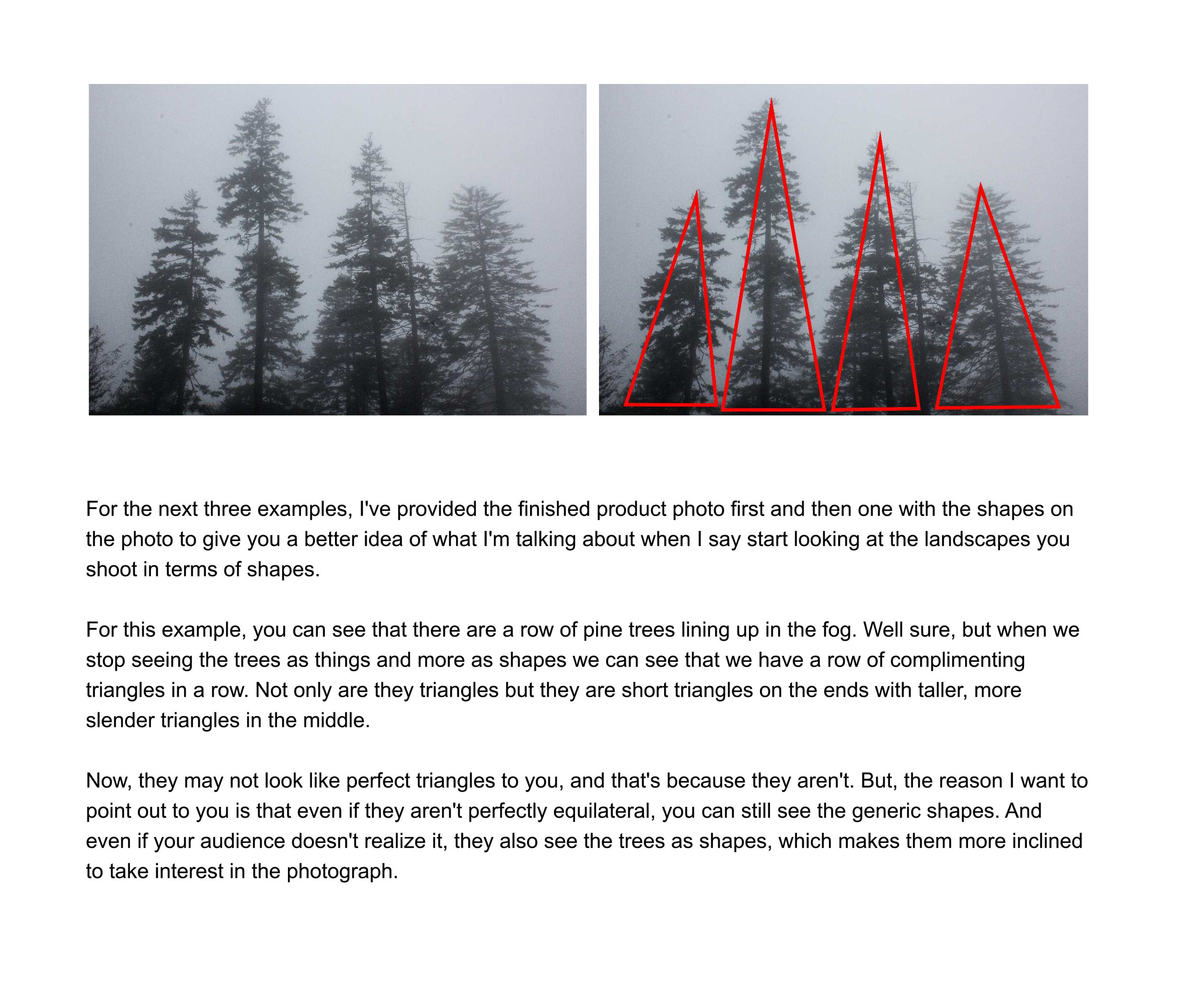 TheLandscapePhotographyHandbook-44.jpg