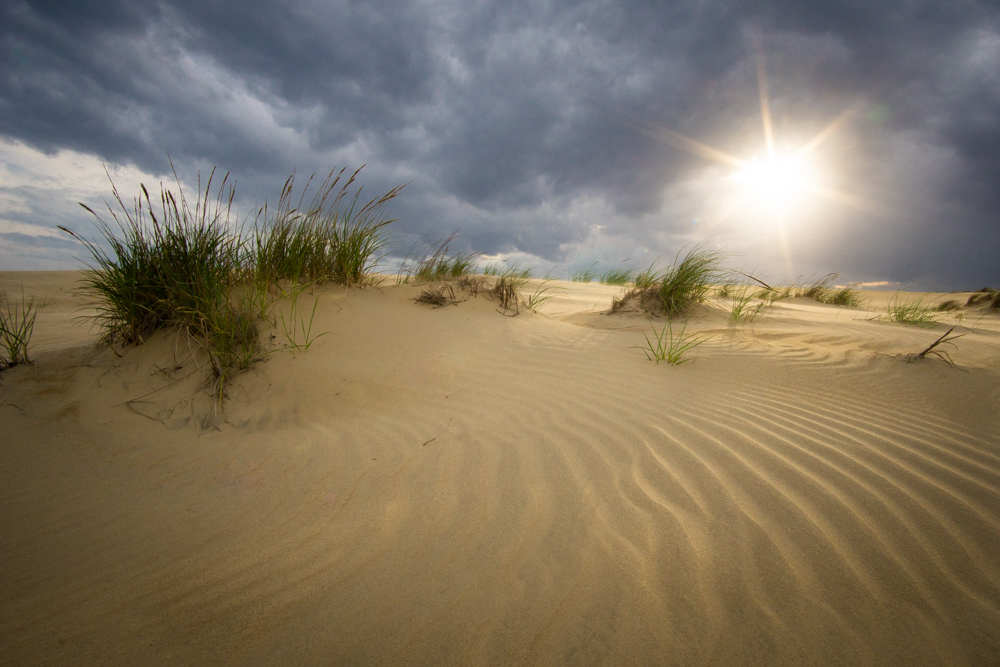Sunset at Jockey's Ridge State Park in Outer Banks, North Carolina