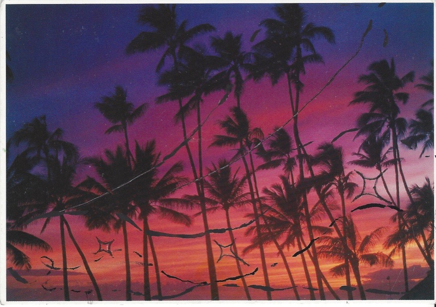 Believe in Magico, Waikiki