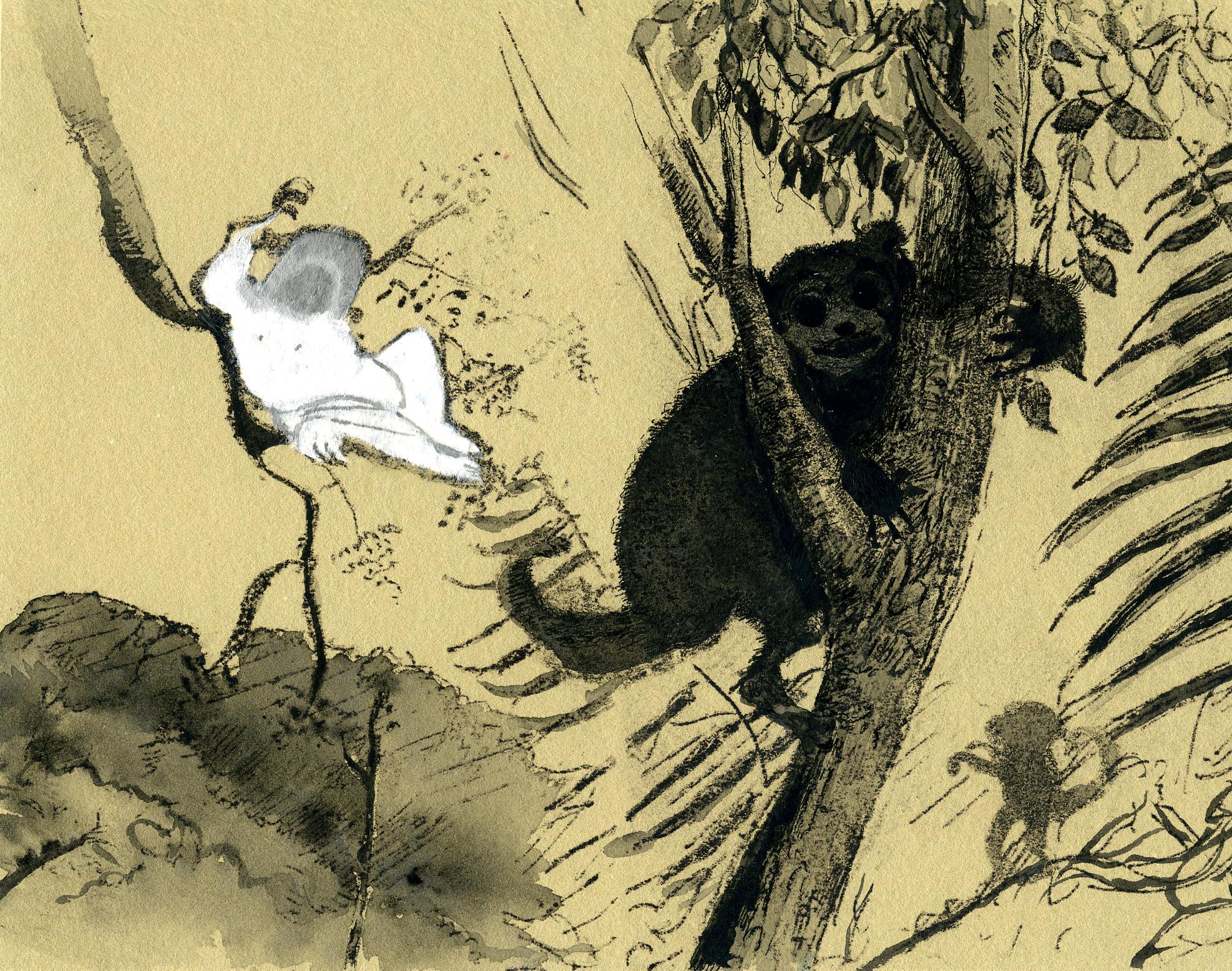 monkeys1.jpg