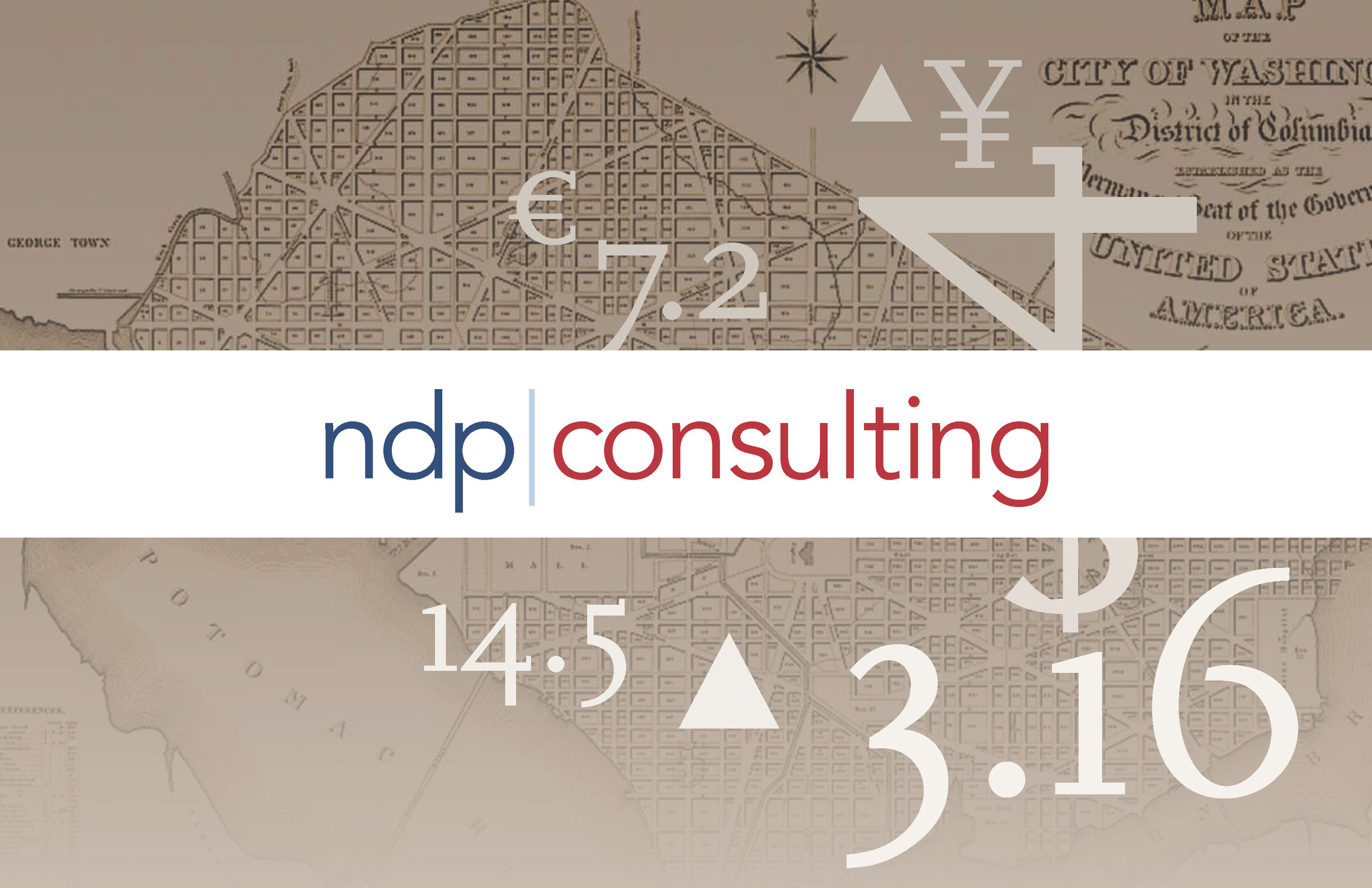 NDP Consulting Brochure