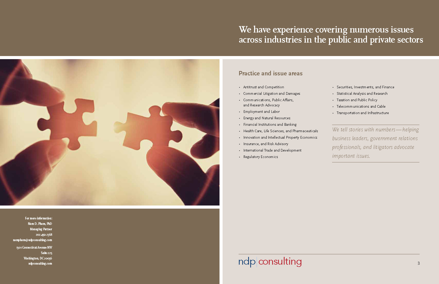 NDP Consulting Group Overview 2012_Page_03.jpg