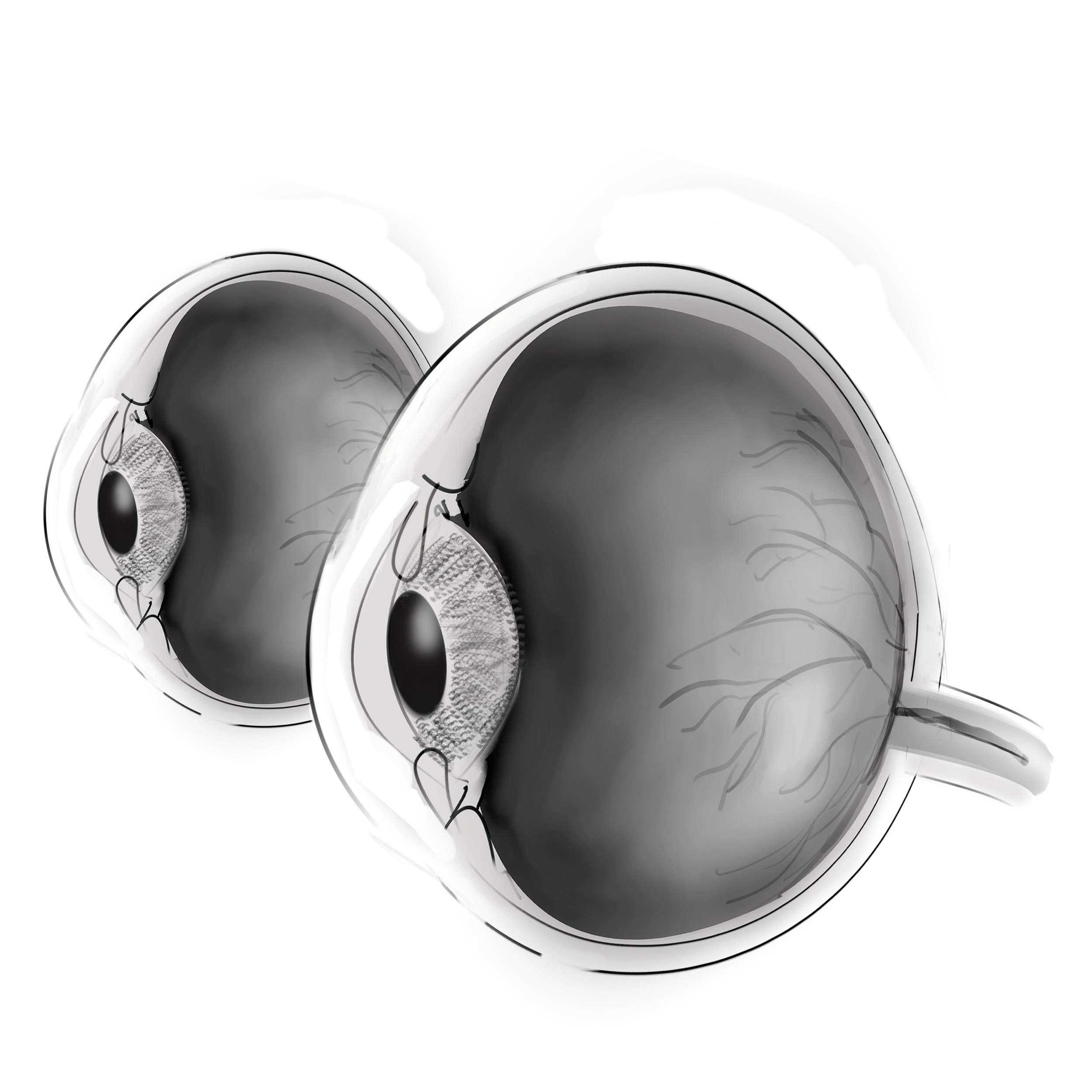 eye-three-qtr.jpg