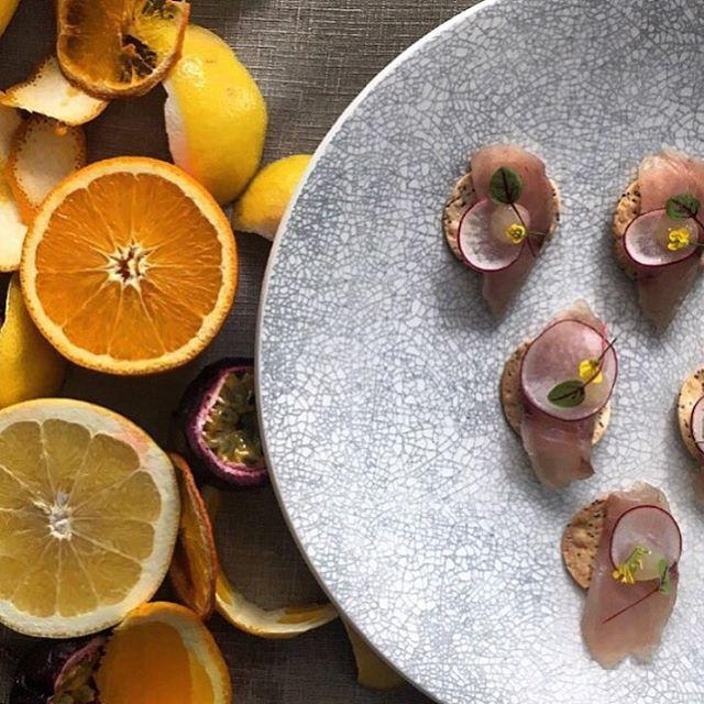 Citrus cured kingfish, grapefruit gel, radish, sea lettuce cracker. Both pretty and tasty.  #studioneon #studioneoncatering #catering #sydney