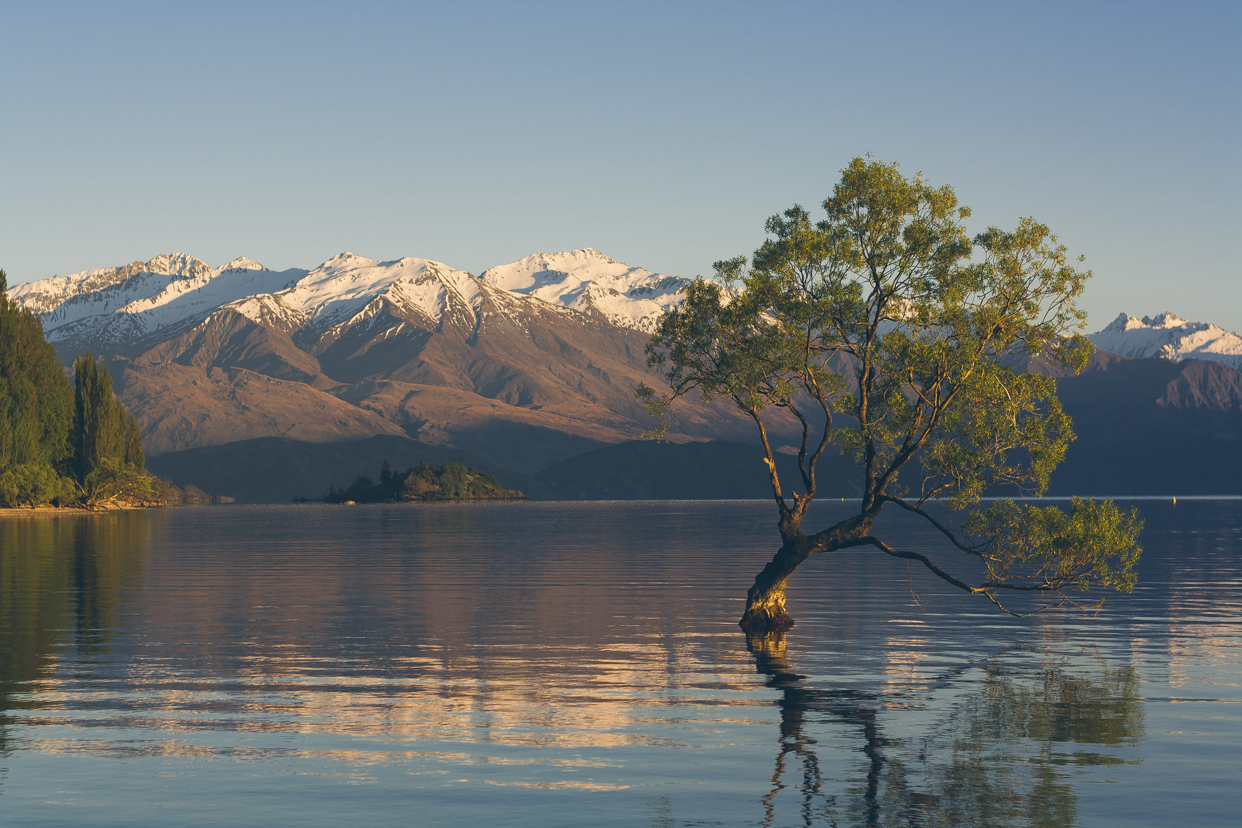 NZ Blog (1 of 1)-14.jpg
