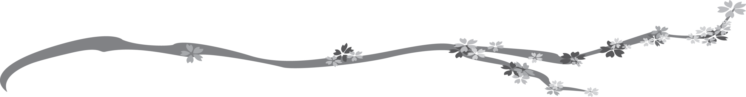 Cherry Branch Portfolio v2.png