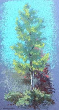 lundman_treestudies2.png