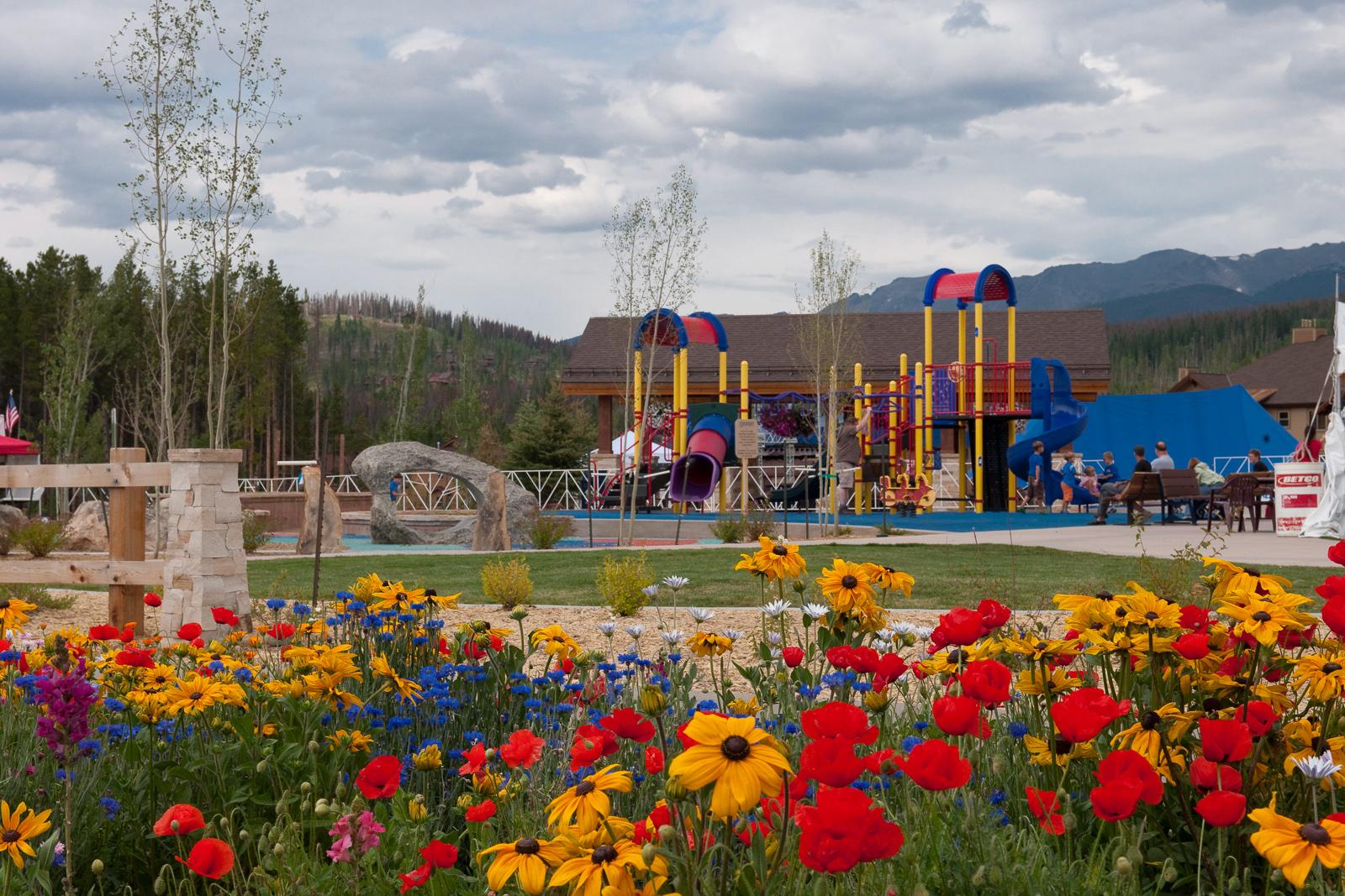 Flowers and playground