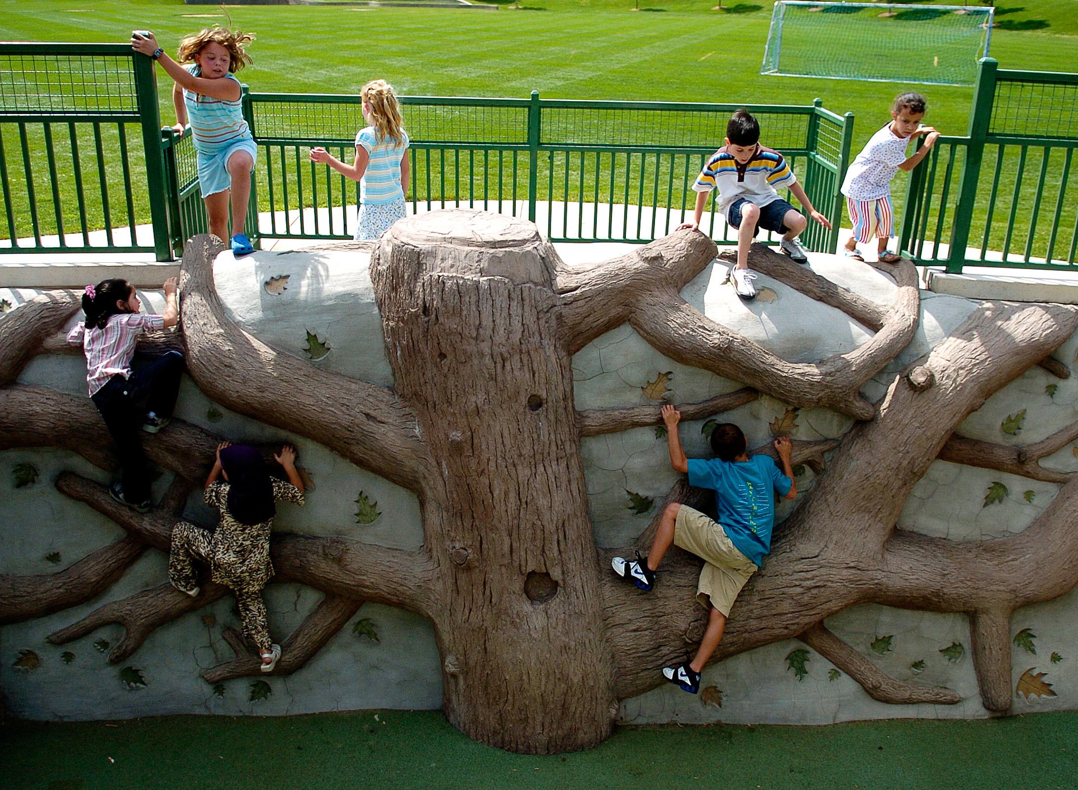 Tree Wall-climbers.jpg