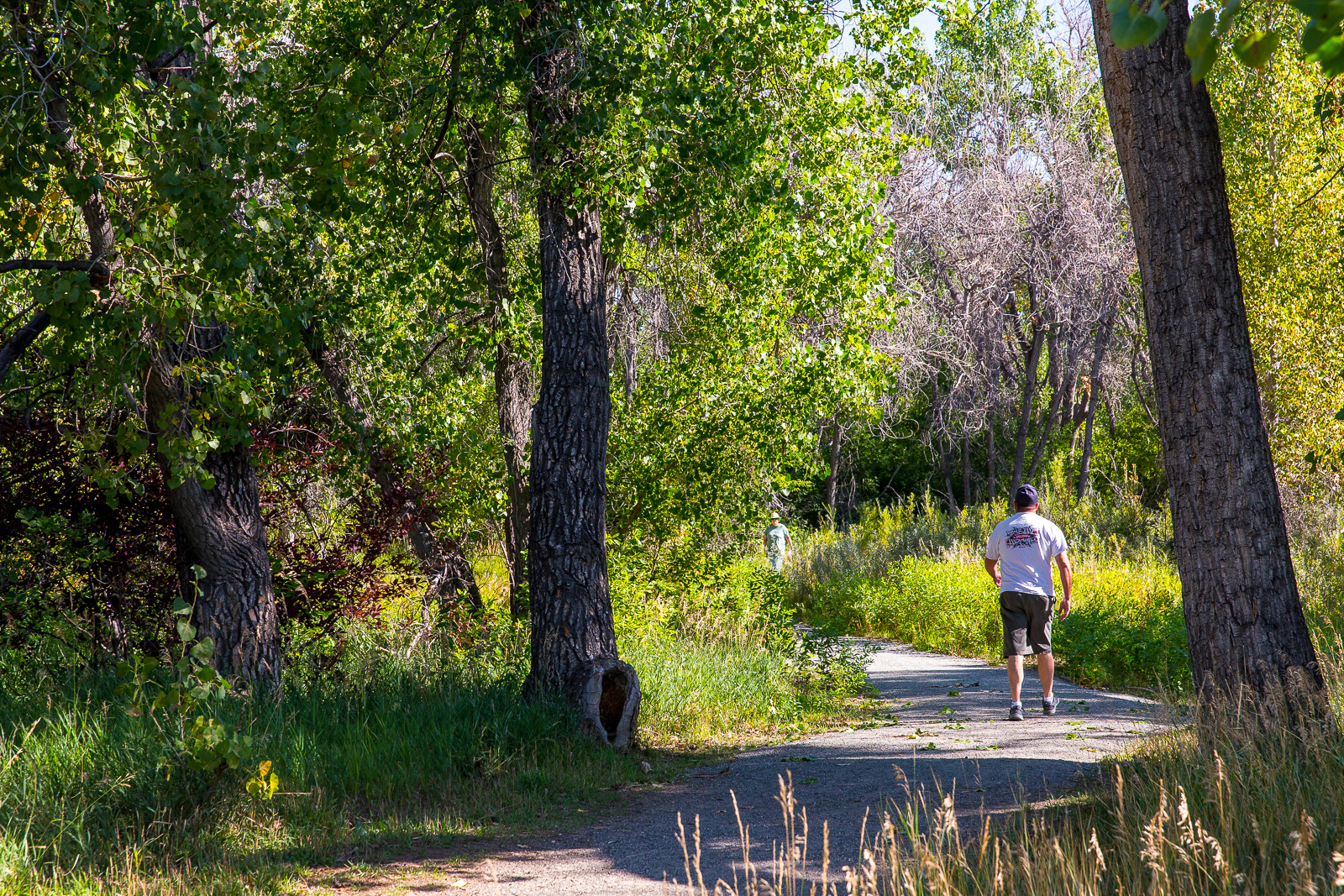 Jewell_Wetlands_Park_201409_35.jpg